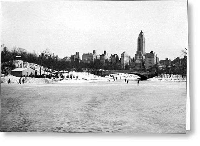Ice Sakers In Central Park Greeting Card by American School