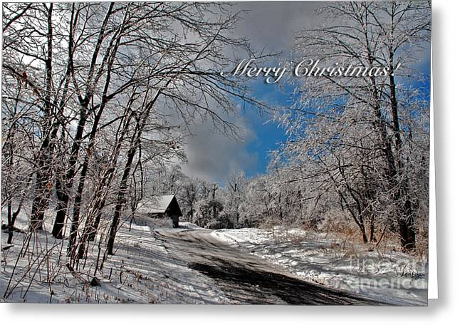 Ice Storm Christmas Card Greeting Card by Lois Bryan