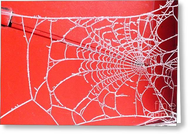 Ice Web Greeting Card