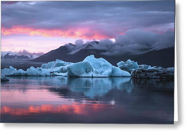 Iceberg  Greeting Card by Damon Beckford