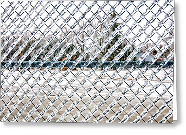 Iced Fence Greeting Card
