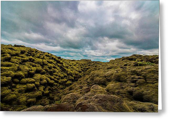 Iceland Moss And Clouds Greeting Card