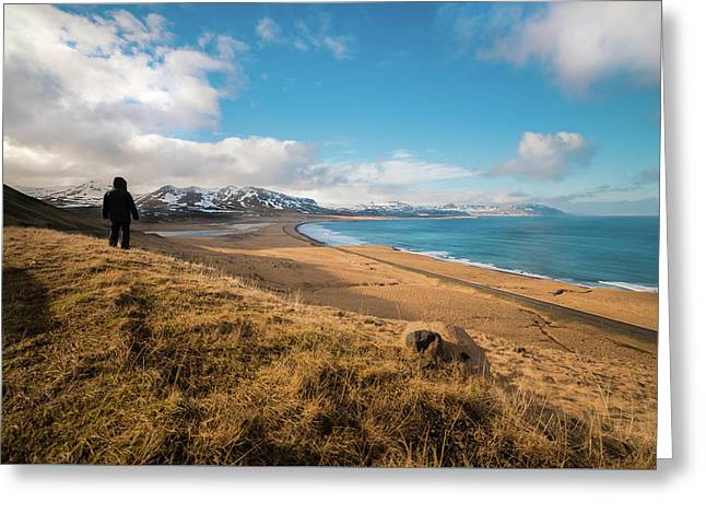 Iceland View Greeting Card by Larry Marshall
