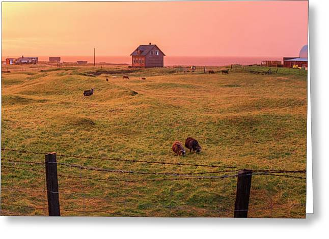 Greeting Card featuring the photograph Icelandic Farm During Sunset by Brad Scott
