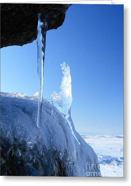 Icicle Greeting Card by Carl Whitfield
