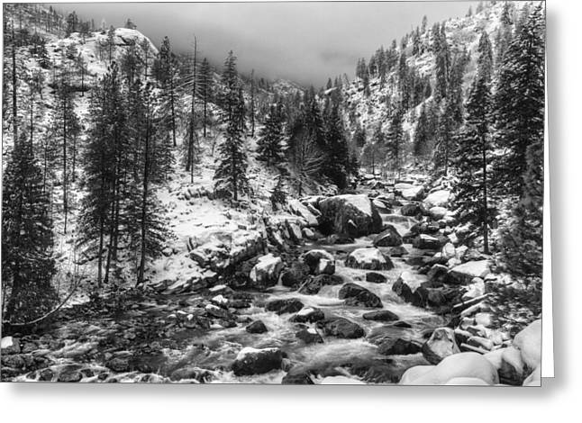 Icicle Creek Black And White Greeting Card by Mark Kiver