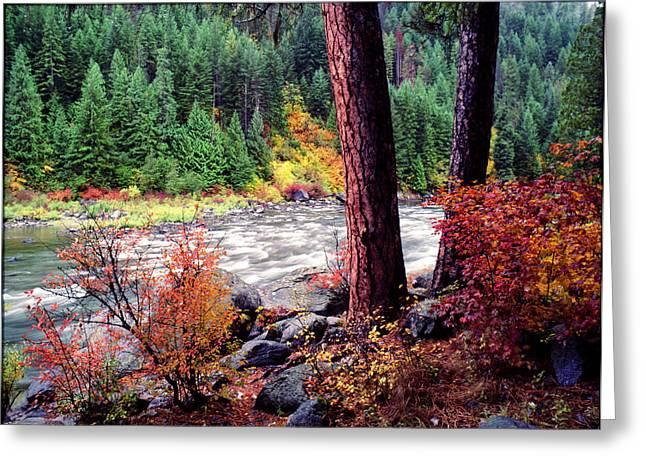 Icicle Creek Greeting Card by Bob Groshart