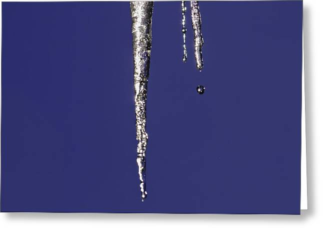 Greeting Card featuring the photograph Icicle  by Sherri Meyer
