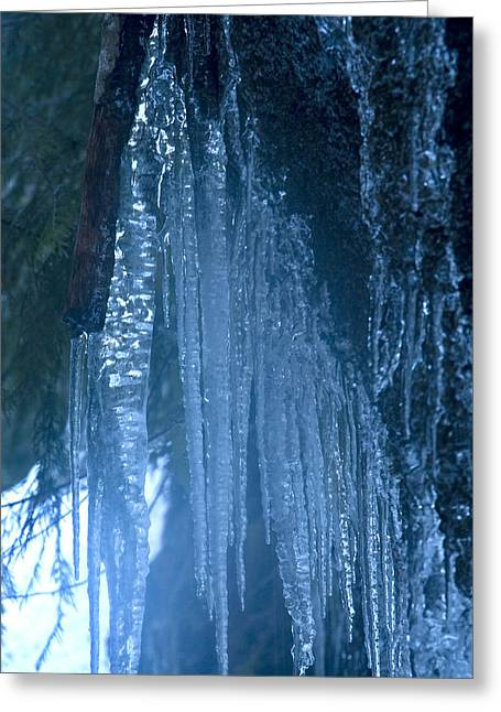 Icicles  5 Greeting Card by John Higby