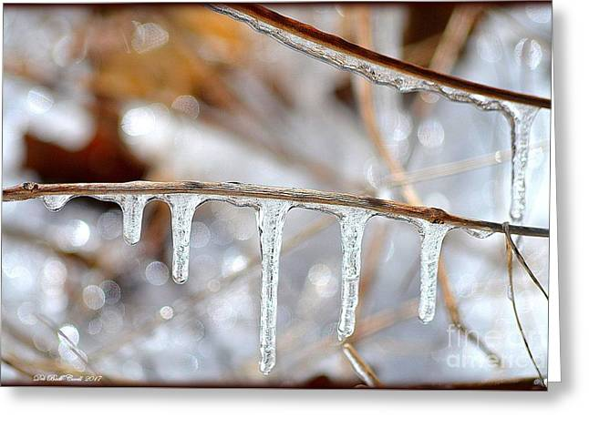 Icicles And Bokeh Greeting Card by Deb Badt-Covell