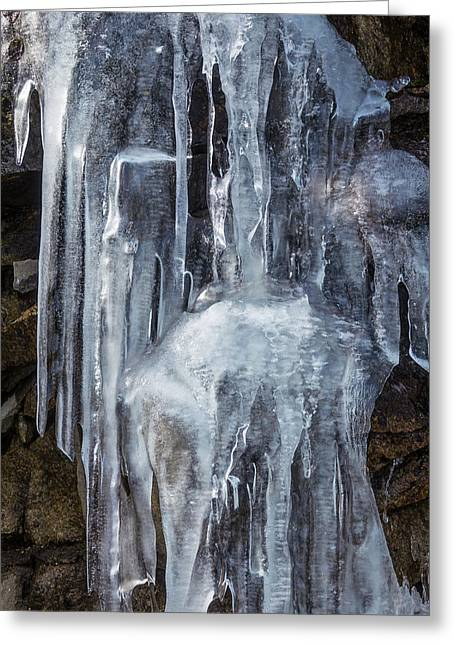 Icicles Greeting Card by Garry Gay