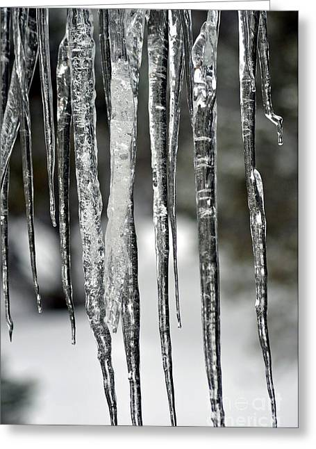 Greeting Card featuring the photograph Icicles by Juls Adams