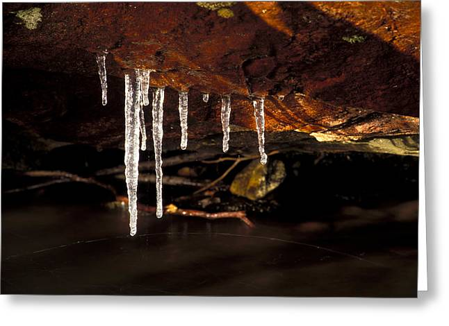 Icicles Greeting Card by Richard Steinberger