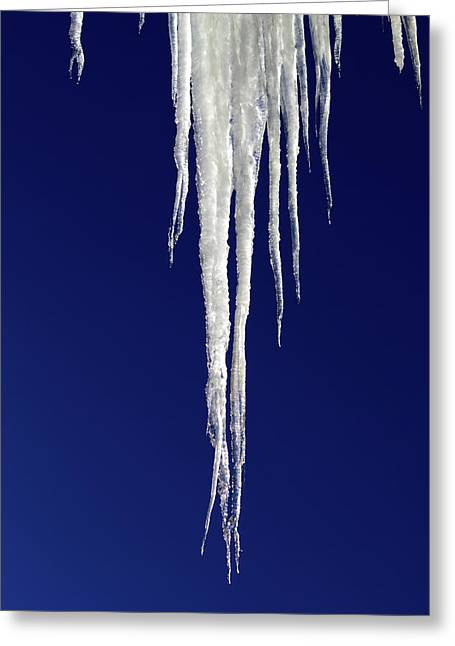 Greeting Card featuring the photograph Icicles by Shane Bechler
