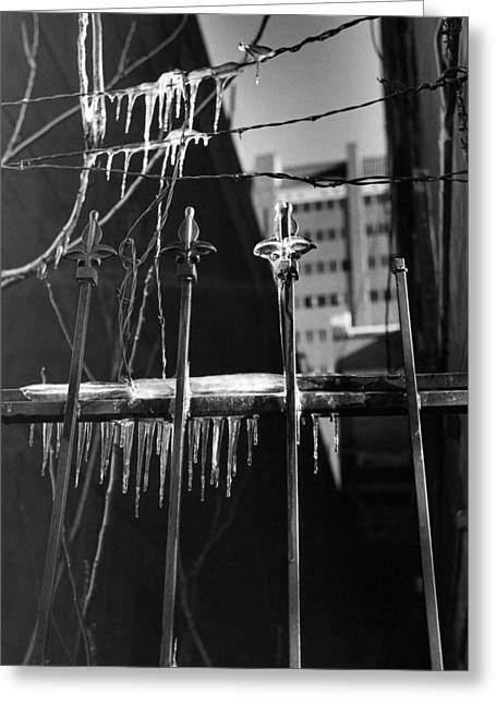 Icy Gates Greeting Card by Jim Furrer