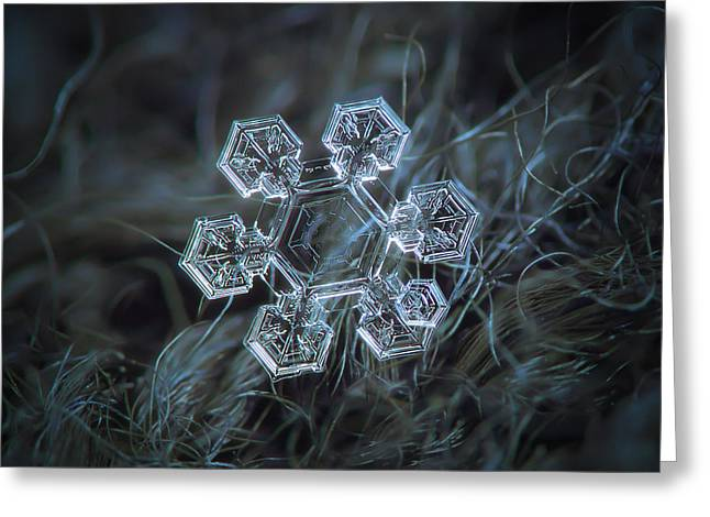 Icy Jewel Greeting Card