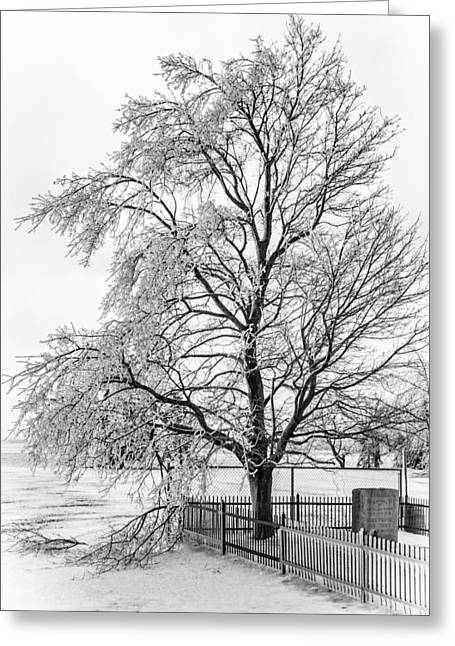 Icy Memories 3 Greeting Card