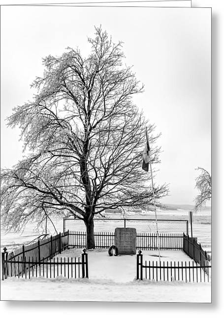 Icy Memories Bw Greeting Card