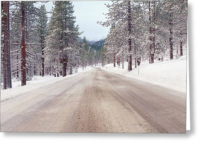 Icy Road And Snowy Forest, California Greeting Card