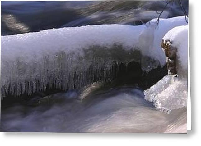 Icy Stream Greeting Card by David Bishop