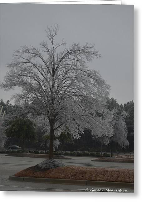 Icy Tree Greeting Card