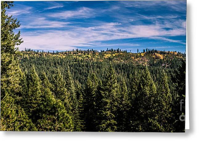 Idaho Backcountry Greeting Card by Robert Bales