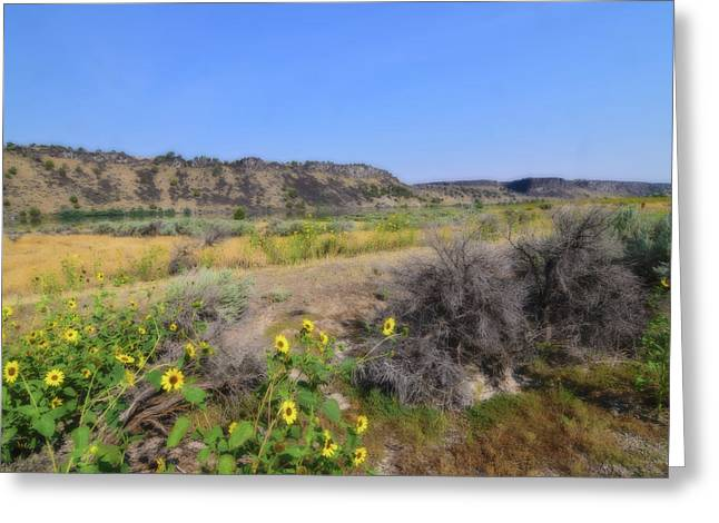 Greeting Card featuring the photograph Idaho Landscape by Bonnie Bruno