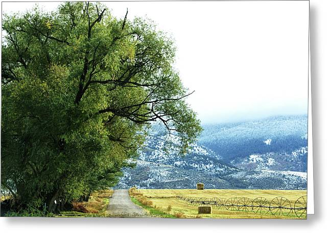 Idaho Road Trip Greeting Card by Cynthia Powell