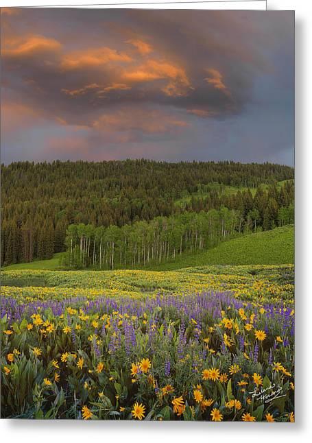 Idaho Spring Greeting Card by Leland D Howard