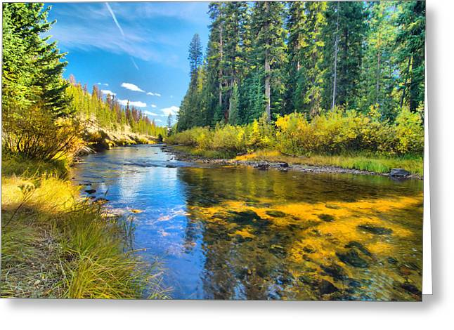 Idaho Stream 2 Greeting Card by Josephine Buschman