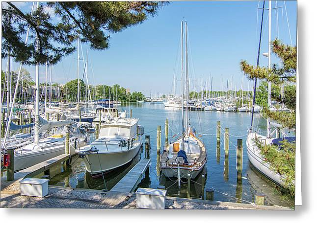 Idle Boats Back Creek Annapolis Greeting Card