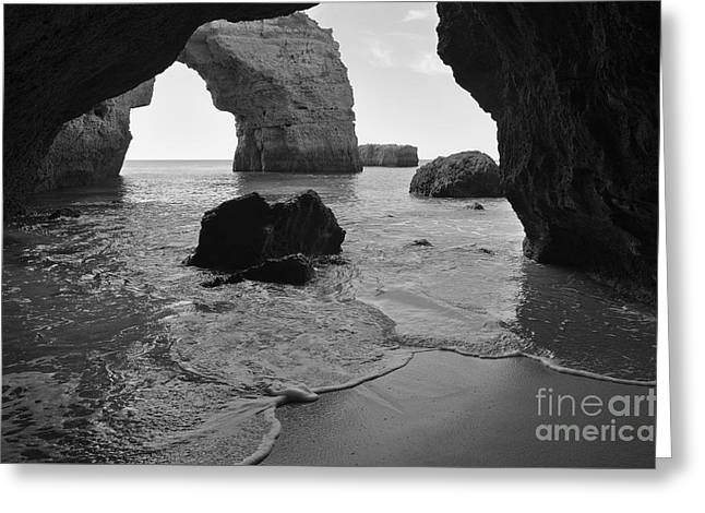 Idyllic Cave In Monochrome Greeting Card by Angelo DeVal
