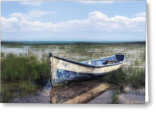 Marshland Greeting Cards - Idyllic Scenery With Boat Greeting Card by Joana Kruse
