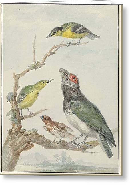 Ier Verschillende Vogels Greeting Card by MotionAge Designs