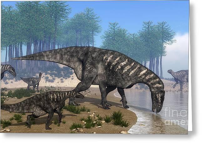 Iguanodon Dinosaurs Herd Greeting Card by Elena Duvernay