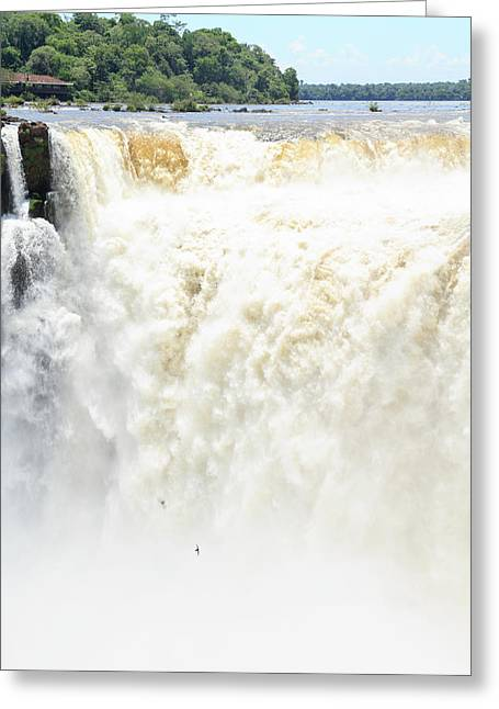 Greeting Card featuring the photograph Iguazu Falls by Silvia Bruno