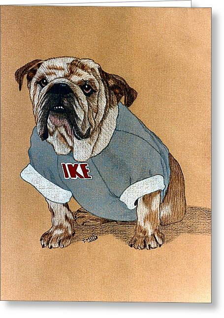 Greeting Card featuring the drawing Ike The Bulldog by Terri Mills