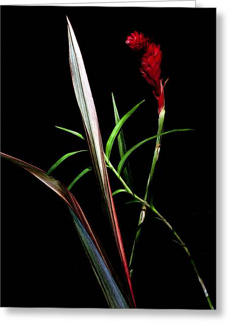 Ikebana Greeting Card by Edward Kreis