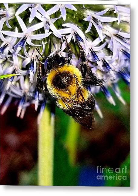 I'll Bee Back Greeting Card