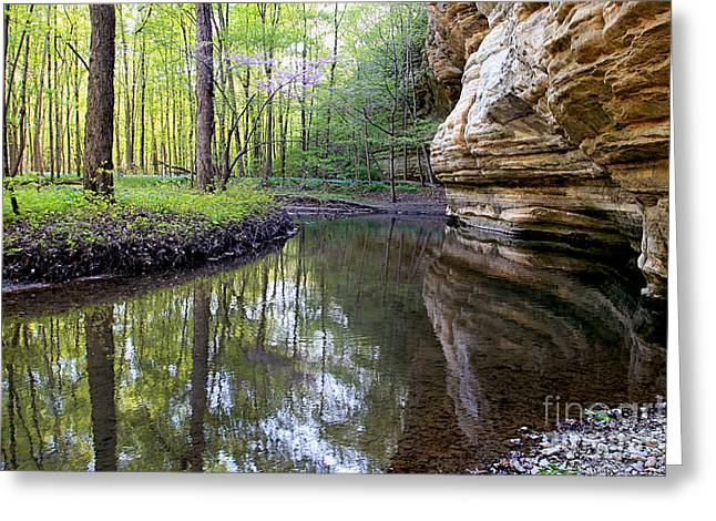 Illinois Canyon In Spring Greeting Card by Paula Guttilla