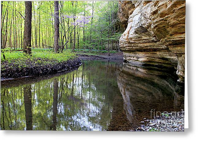 Illinois Canyon In Spring Starved Rock State Park Greeting Card