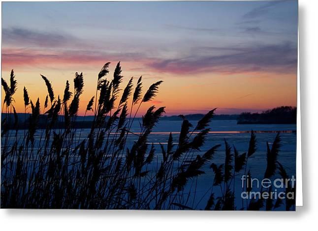 Illinois River Winter Sunset  Greeting Card