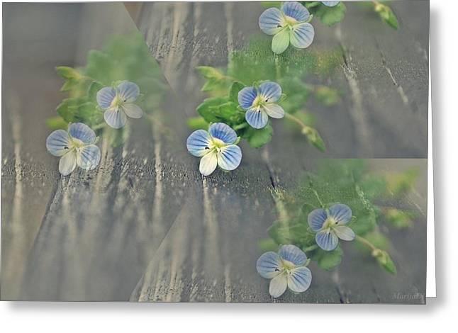 Illusion Of Spring Greeting Card by Marija Djedovic