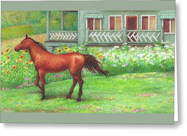 Illustrated Horse Summer Garden Greeting Card