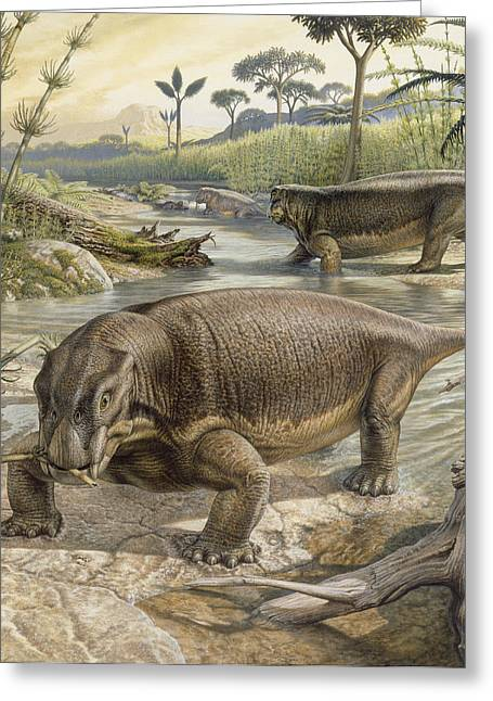 Extinction Of Species Greeting Cards - Illustration Of Lystrosaurus Greeting Card by John Sibbick