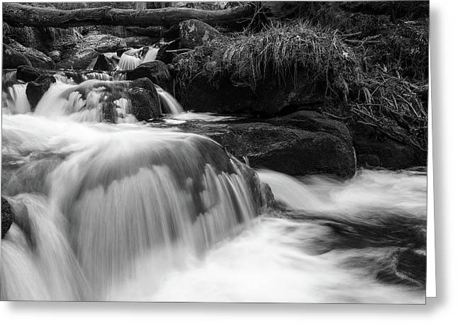 Greeting Card featuring the photograph Ilse, Harz Monochrome  by Andreas Levi