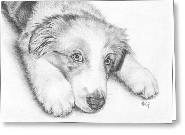 I'm Sorry - Australian Shepherd Puppy Greeting Card by Heather Page