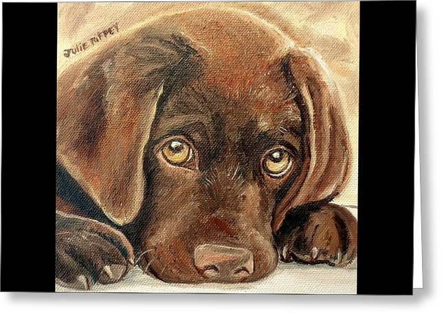 I'm Sorry - Chocolate Lab Puppy Greeting Card