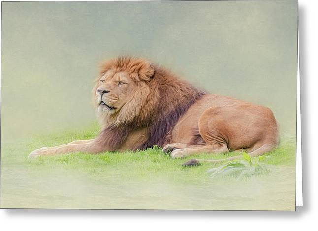 I'm The King Greeting Card by Roy McPeak