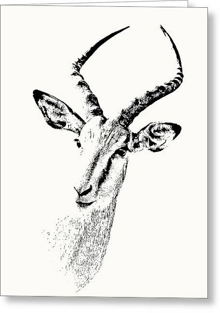 Impala Antelope Portrait Greeting Card